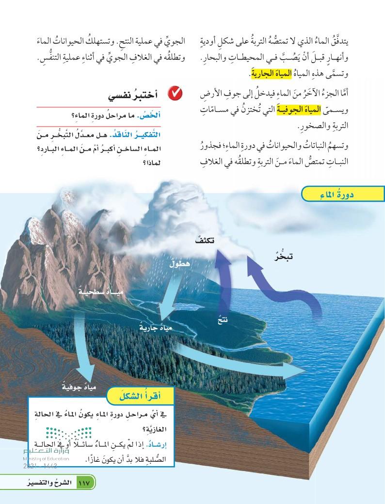 الدرس الأول: الدورات في الأنظمة البيئية