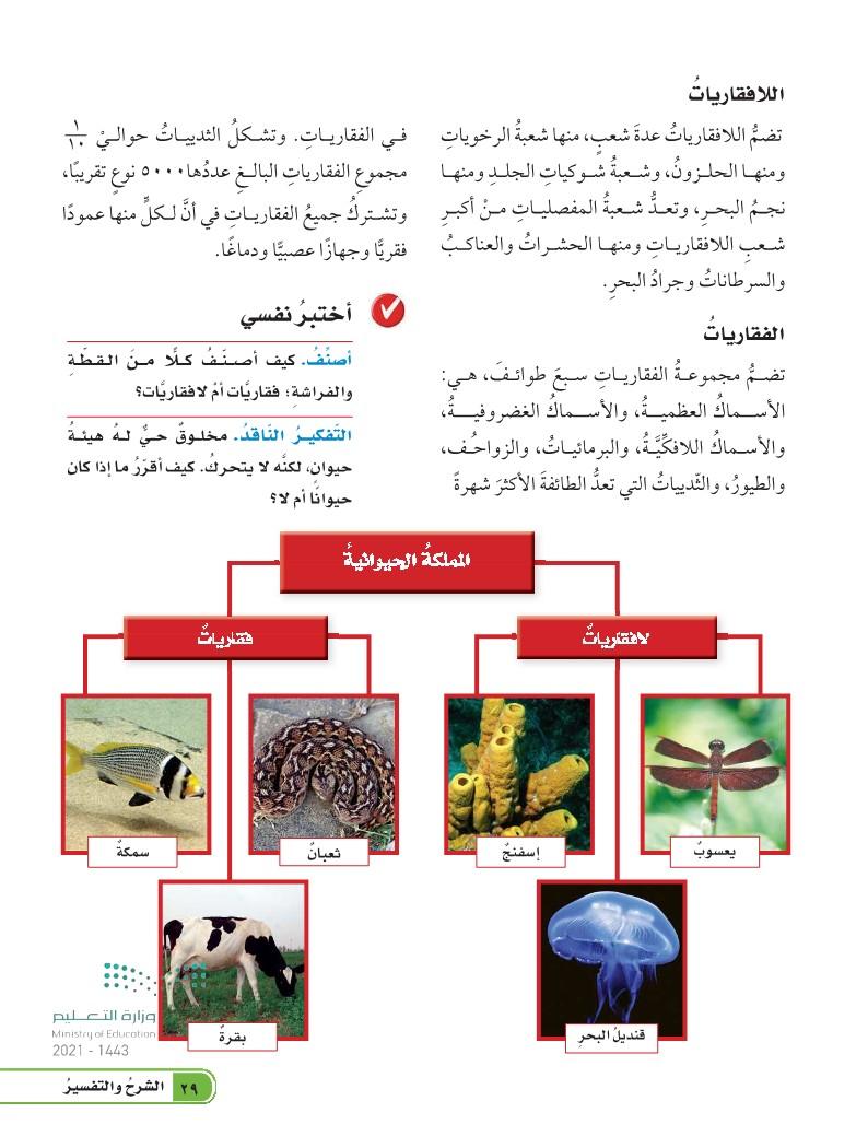 الدرس الأول: تصنيف المخلوقات الحية