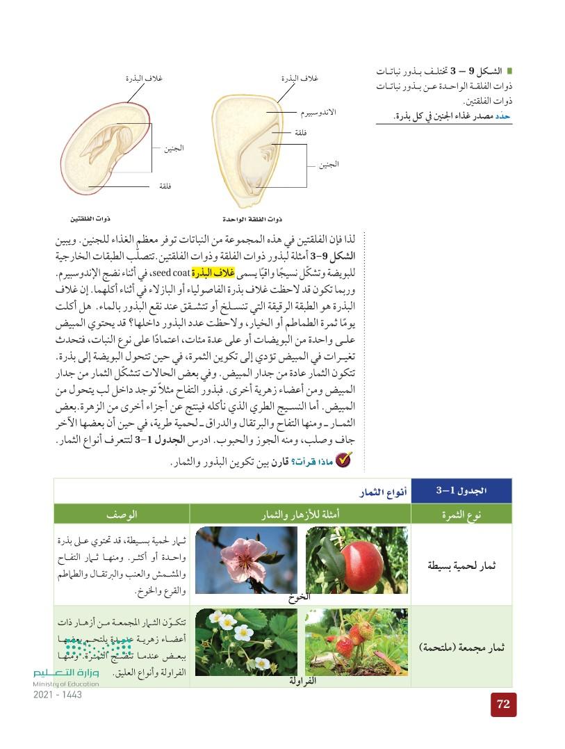 3-2 النباتات الزهرية