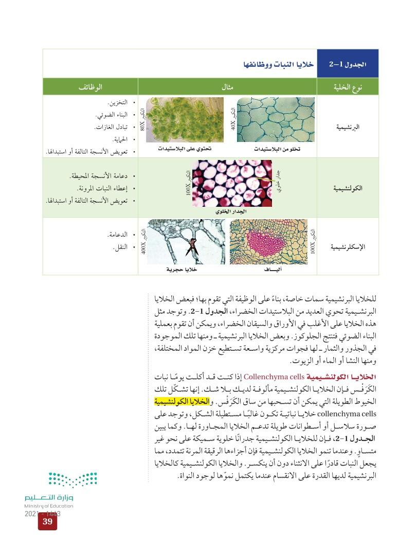 2-1 خلايا النبات وأنسجته