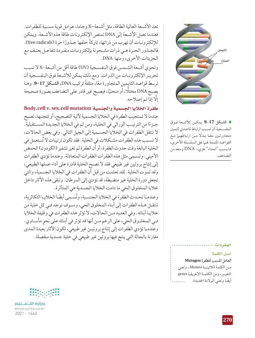 9-4 التنظيم الجيني والطفرة