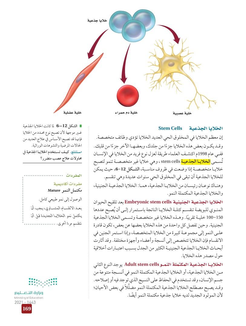 6-3 تنظيم دورة الخلية