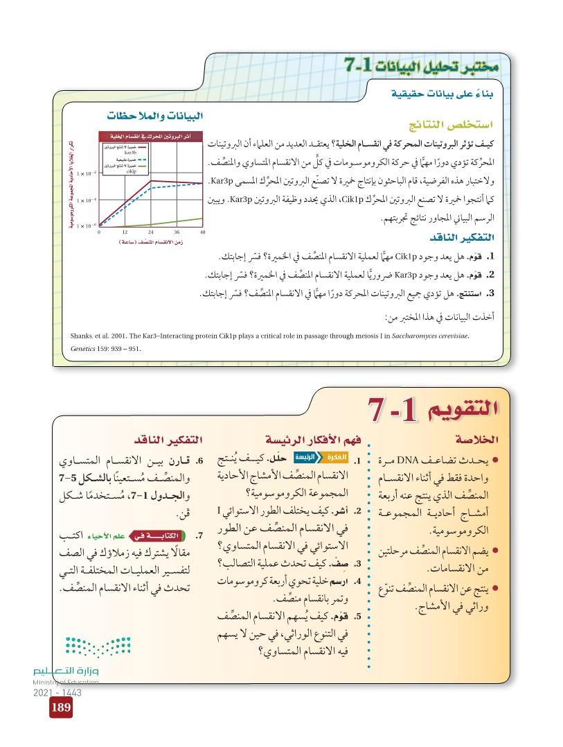 7-1 الانقسام المنصِّف