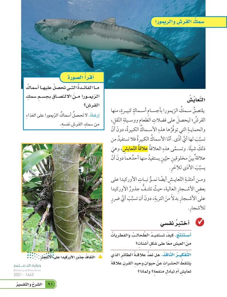 الدرس الأول: العلاقات في الأنظمة البيئية