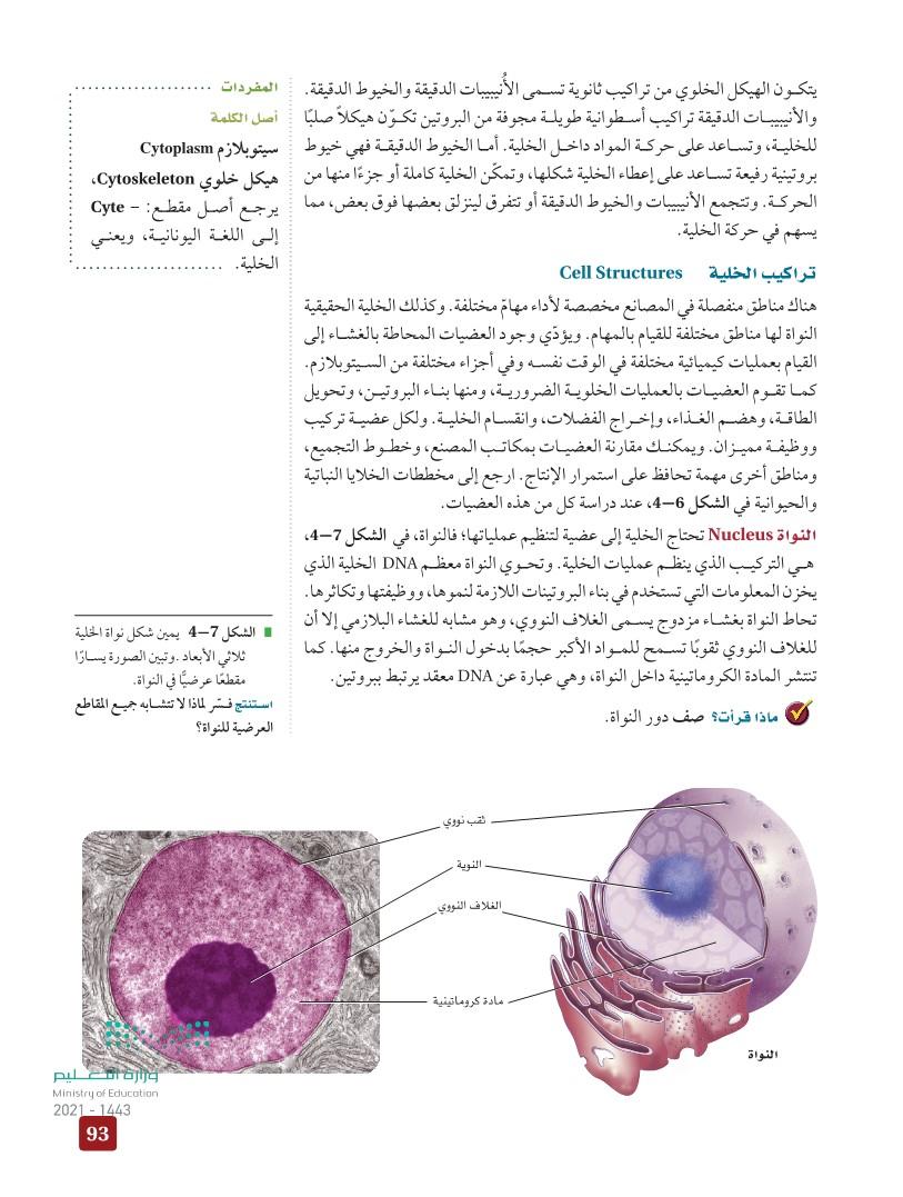4-1 التراكيب الخلوية والعضيات