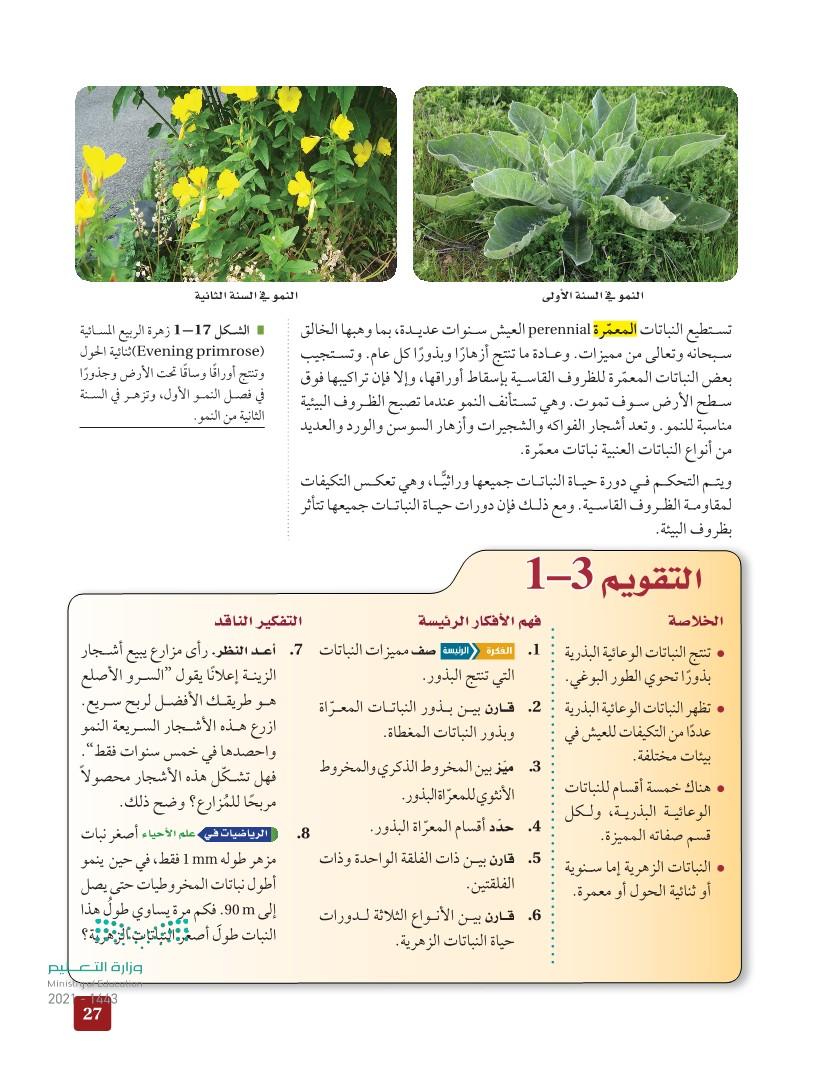1-3 النباتات الوعائية البذرية