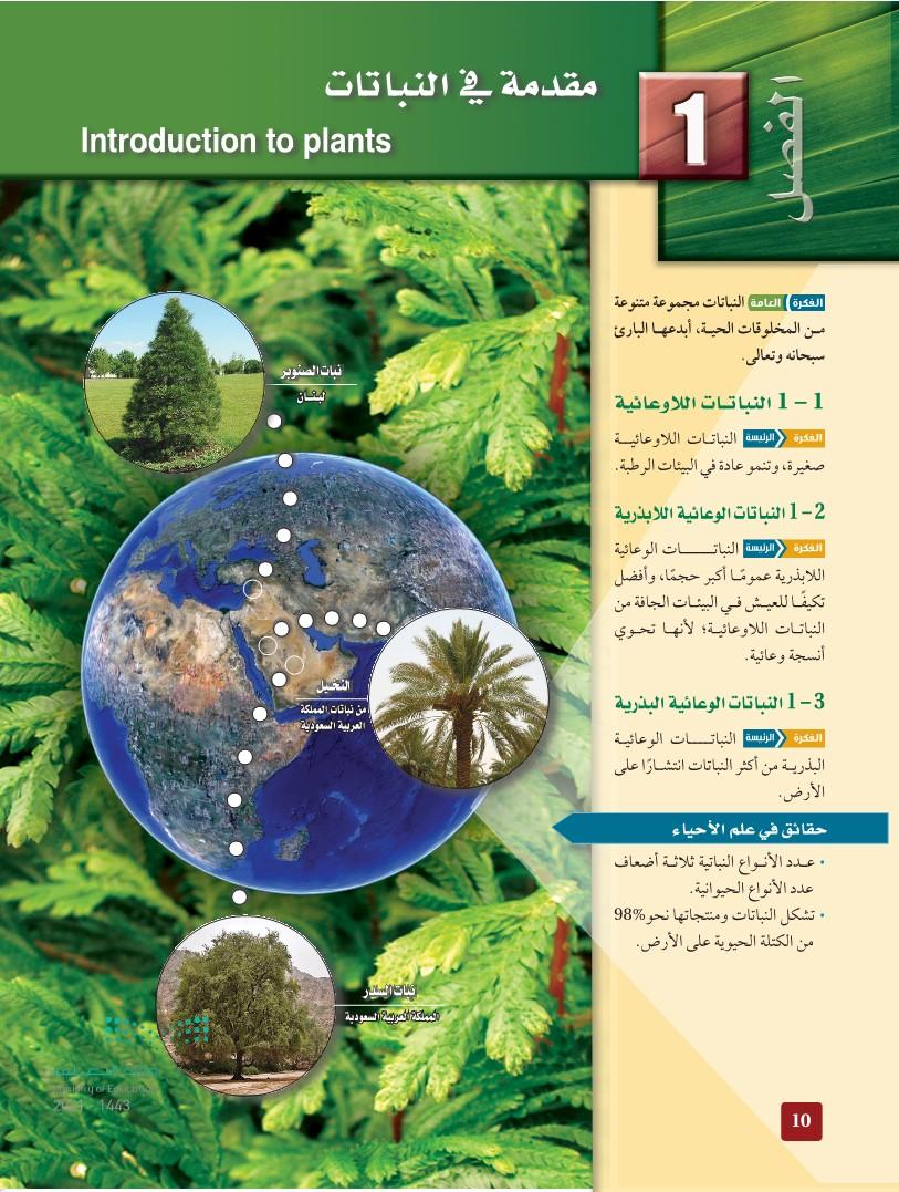 1-1 النباتات اللاوعائية