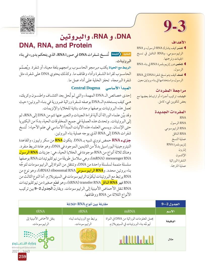 DNA 9-3 و RNA ، والبروتين